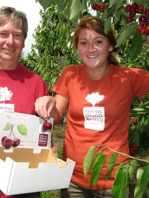 45 South orchard manager Tim Jones and orchard worker Emma Rankin, of Cromwell, pick Titan...