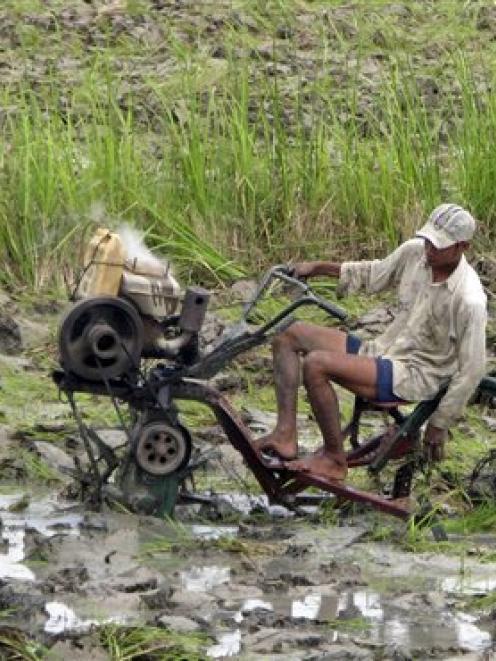 A farmer outside the village on Chaungtha beach in the Irrawaddy Delta region, Myanmar, ploughs a...