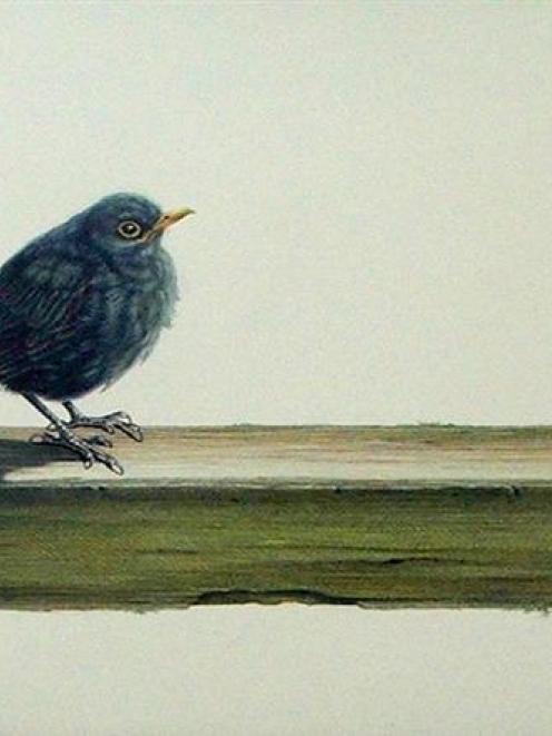 """Blackbird"", by Karen Baddock"