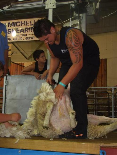 Kahn Culshaw, of Ashburton, on his way to winning the Otago junior shearing title in Balclutha...