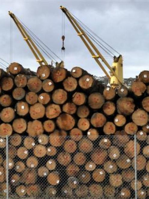 Log prices  have risen in the past month. Photo by Gerard O'Brien.