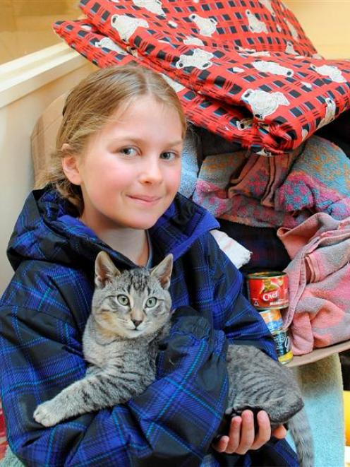 Wanaka Primary School pupil Neve Faed (8) cuddles a cat at the SPCA Otago  after donating boxes...