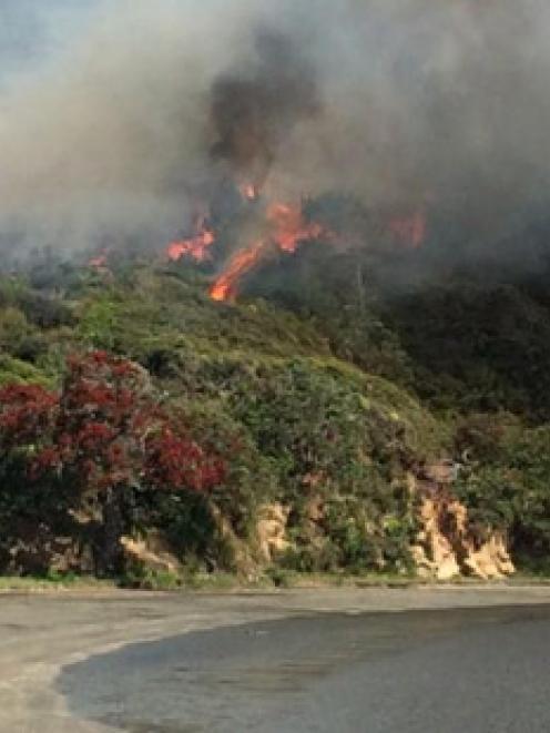 A bushfire at Cornwallis West Coast of Auckland. Photo / supplied via Twitter / Nigel Gangitano