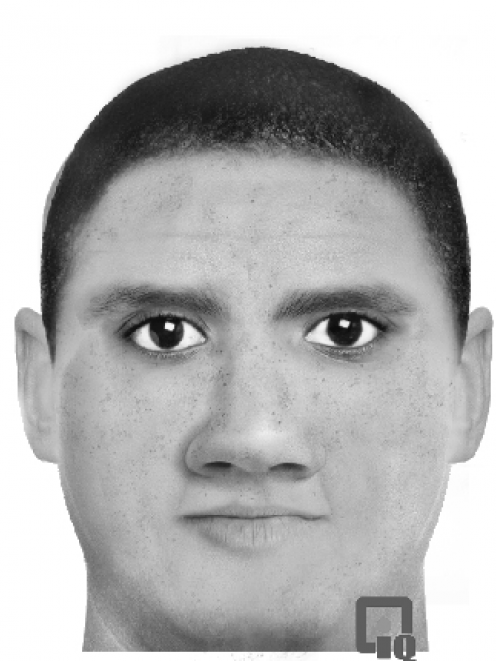 A computer-generated likeness of the attacker. Supplied image.