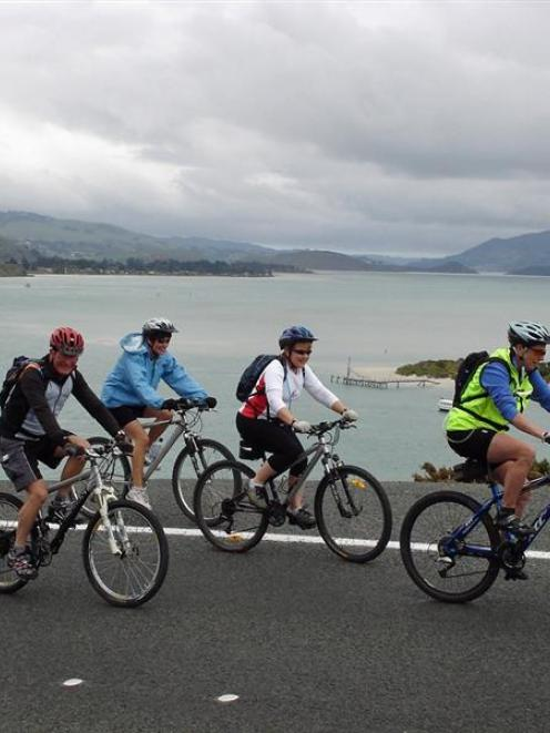 A group of AOK Social Riders head up the hill from Harington Point Rd towards Taiaroa Head, with...