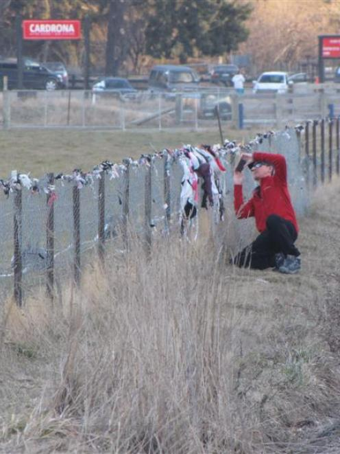 A motorist takes a photograph of the controversial bra fence in the Cardrona Valley. Photo by...