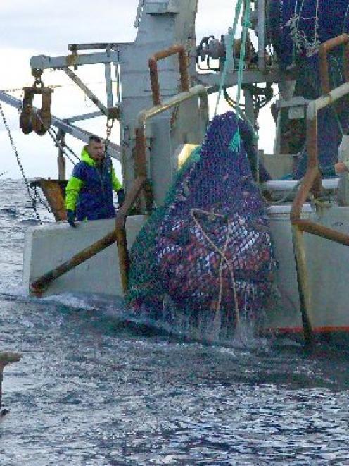 A net is hauled aboard the deep-sea trawler Corsair in international waters in the Tasman Sea....
