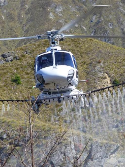 A Nokomai Helicopters aircraft uses American drift reduction nozzles when spraying herbicide on...