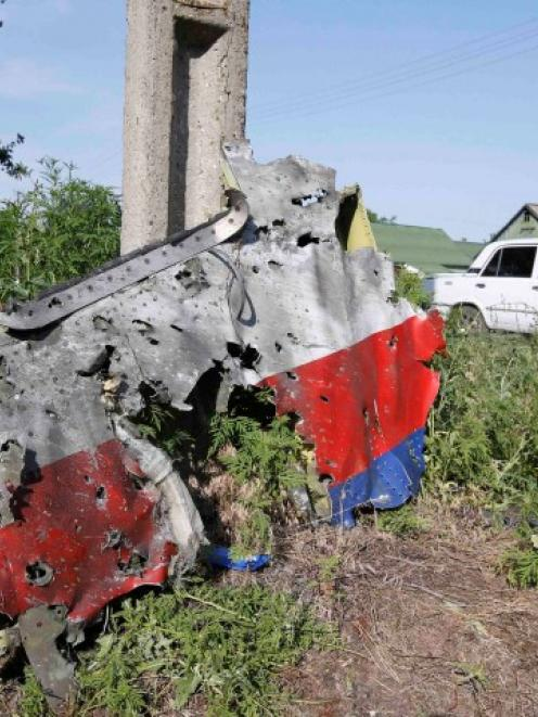 A piece of the wreckage is seen at a crash site of the Malaysia Airlines Flight MH17 in the...