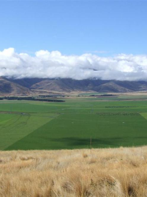 A view looking down on Doug McIntyre's irrigation and dairy development between Omarama and...