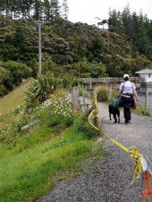 A walker and their dog enjoy a stroll along the top of the Ross Creek reservoir embankment in...