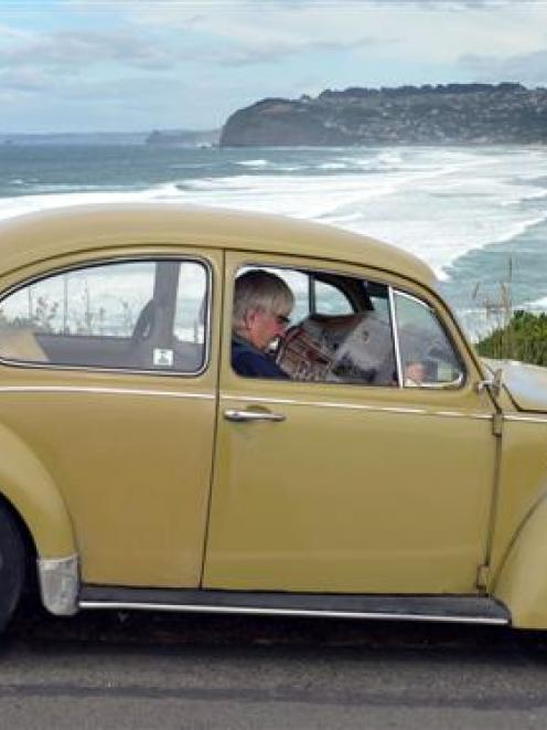 Alan Waugh, in his 1970 Volkswagen Beetle, was the first motorist waiting to drive on the...