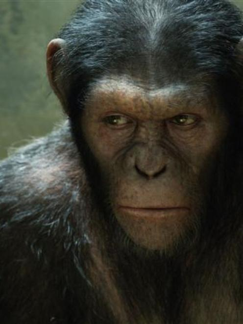 Andy Serkis plays Caesar in the adventure sci-fi <i>Rise of the Planet of the Apes</i>. Photo...