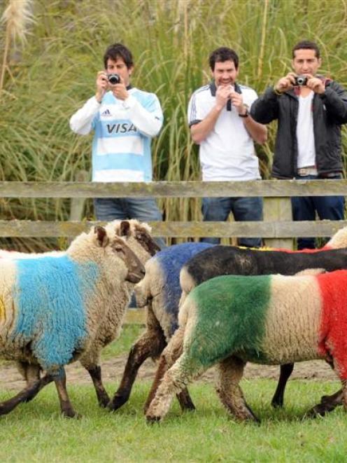 Argentina supporters (from left) Carlos Schavlovsky, Martin Liguori, Gonzalo Medina and Jimena...
