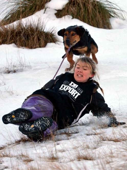 Ashley Broadman and her dog Wade skitter down the slope during the Queenstown Winter Festival dog...