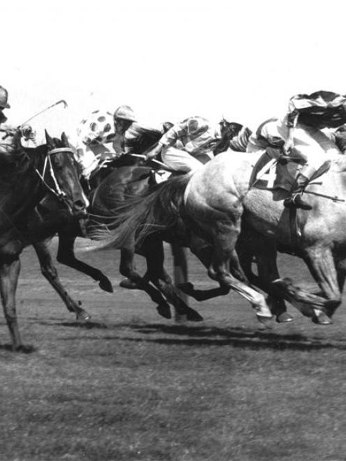 Baghdad Note (4) charges to victory in the 1970 Melbourne Cup. Photo by Herald-Sun.