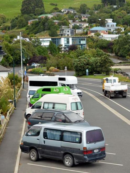 Board members voted unanimously to recommend the council abandon the Macandrew Bay trial site.