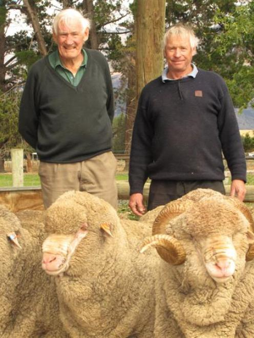 Bill (left) and Robert Gibson are planning to keep up an 81-year tradition by taking merinos to...
