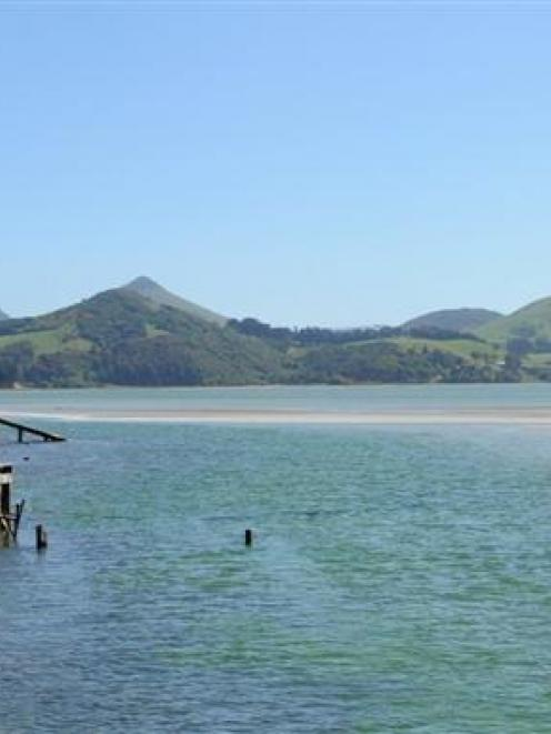 Papanui Inlet. Photo by ODT.