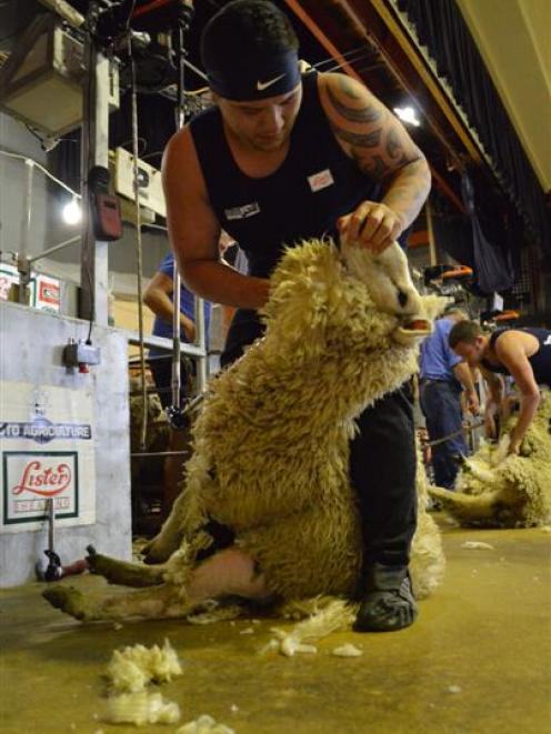 Brett Roberts enjoys the challenge of shearing. Photo from ODT files.