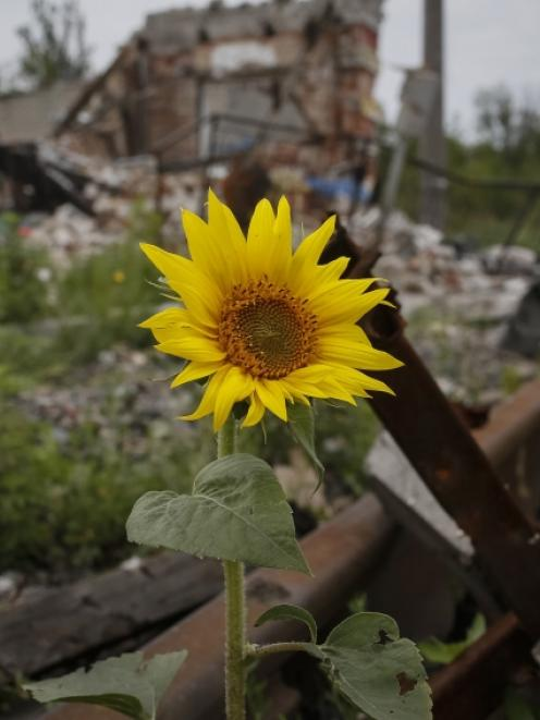 Buildings damaged by a recent shelling are seen in the eastern Ukrainian village of Semenovka....