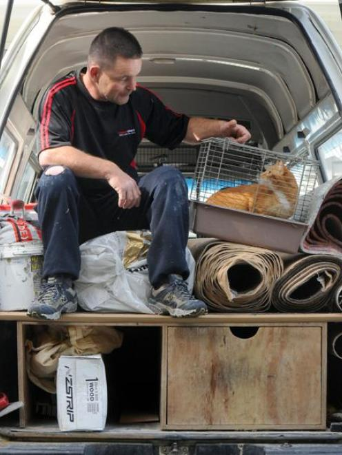 Carpet Court contractor Kerry Bell checks up on his uninvited hitchhiker at the Otago SPCA...