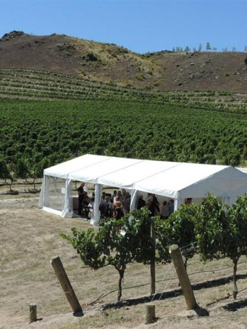 Central Otago Pinot Noir Celebration  lunch at Akarua vineyard. Photo by Charmian Smith.