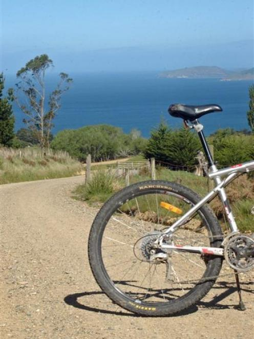 Climbing Church Rd towards the top of the Kilmog, with Taiaroa Head in the background. Photo by...