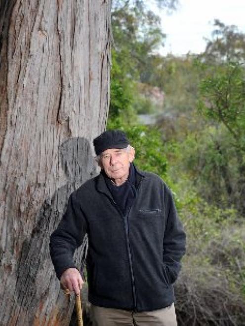Coastal Otago Conservation Award finalist Nigel McPherson stands beside a totara near the...