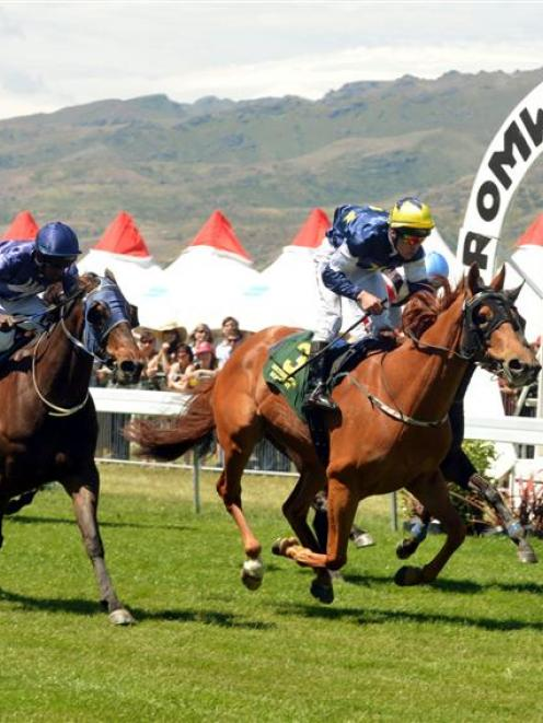 Comanche Gold (centre) wins the Queenstown Cup at Cromwell yesterday,  from  Keep The Conflict ...