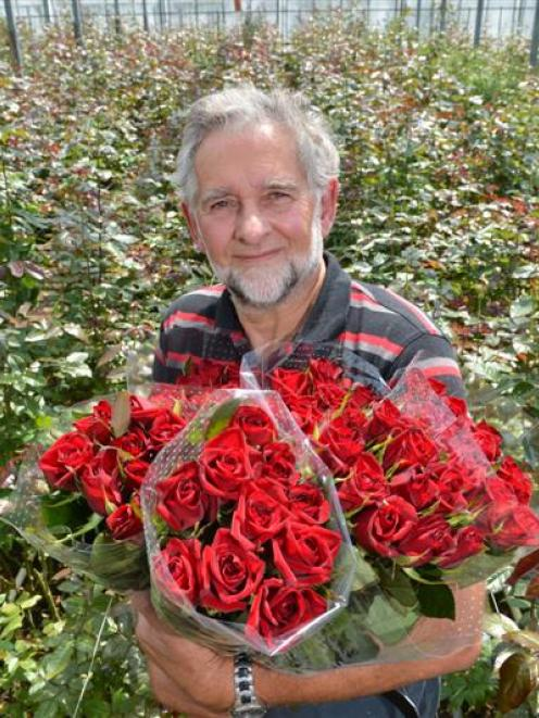 Commercial rose grower John van Delft, of Mosgiel, displays bunches of his signature rose, Black...