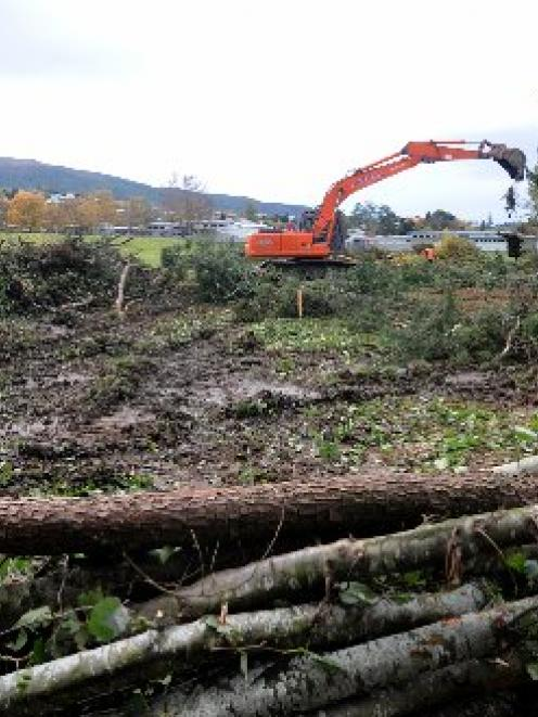 Contractors clear trees from the site of the Summerset at Bishopscourt retirement village, off...