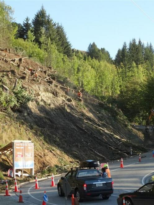 Contractors remove wilding trees from above the Coronet Peak access road, near Queenstown. Photo...