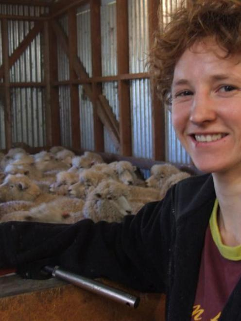 Cordula Ihring takes a break from shearing at a North Otago farm recently. Photo by Sally Rae.