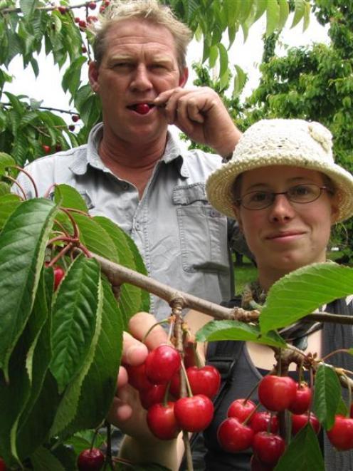 Czech seasonal worker Adela Novotna  and Jackson Orchard managing owner Mark Jackson taste some...
