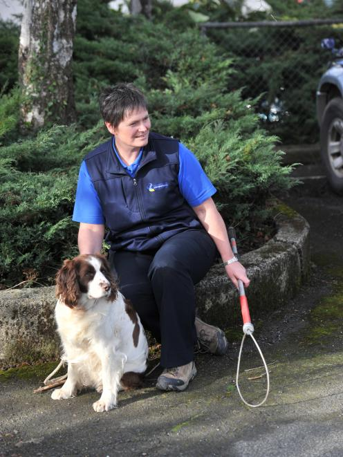 Dunedin City Council animal control officer Karan Whyte, with springer spaniel Tess, is...