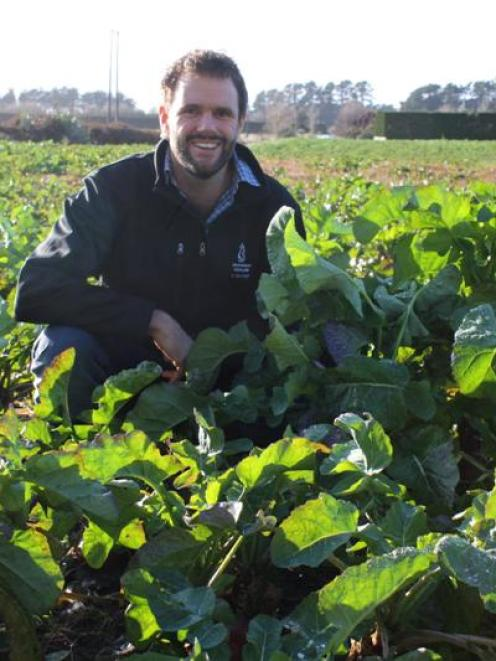 Environment Southland soil and science programme co-ordinator George Ledgard inspects a crop of...