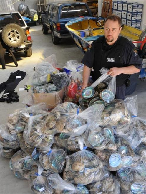 Fisheries surveillance officer Tyrone Robinson, of Dunedin, with the paua shells and meat...