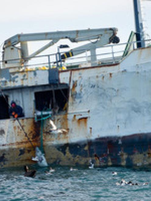 Fishermen haul toothfish out of the Southern Ocean from the MV Kunlun. Photo / NZ Defence