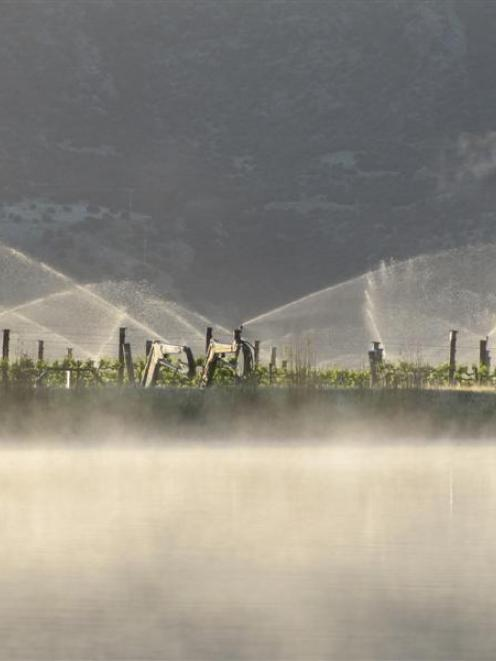 Fog hangs over an irrigation pond feeding overhead frost-fighting sprinklers on a vineyard...