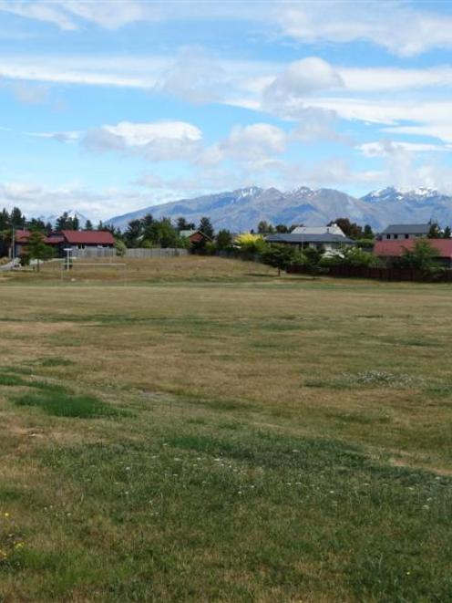 For the second consecutive year, Wanaka's Allenby Park will not be watered by the Queenstown...