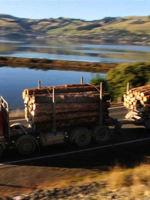 Forestry is enjoying a resurgence driven by demand for logs. Photo by Craig Baxter.