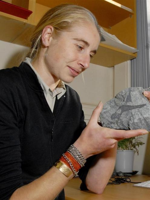 """Geologist Dr Virginia Toy examines an """"earthquake in a rock"""" in her office on Tuesday afternoon...."""