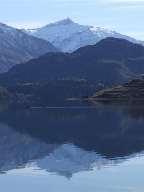 Glacier-fed Lake Wanaka can look clean and idyllic, but the algae growing in its depths is...