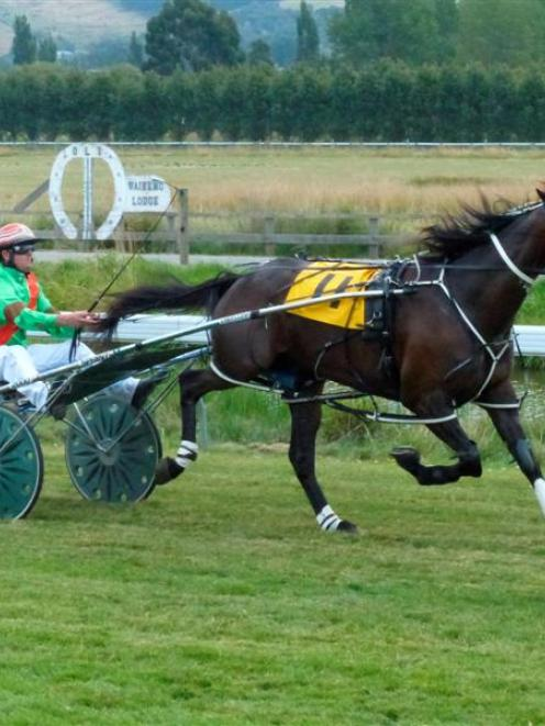 Glencoe V C paces away effortlessly to win the $25,000 Waikouaiti Cup yesterday. Photo by Matt...