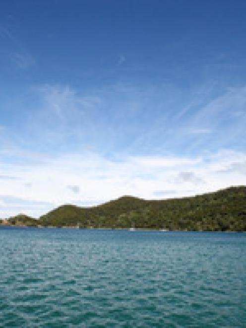 Great Barrier Island. NZ Herald file photo