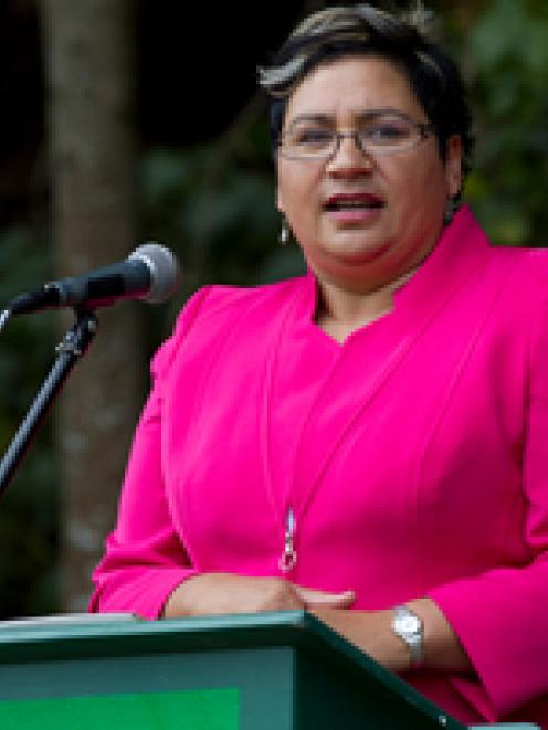 Green Party co-leader Metiria Turei announced the policy today. File photo / Brett Phibbs