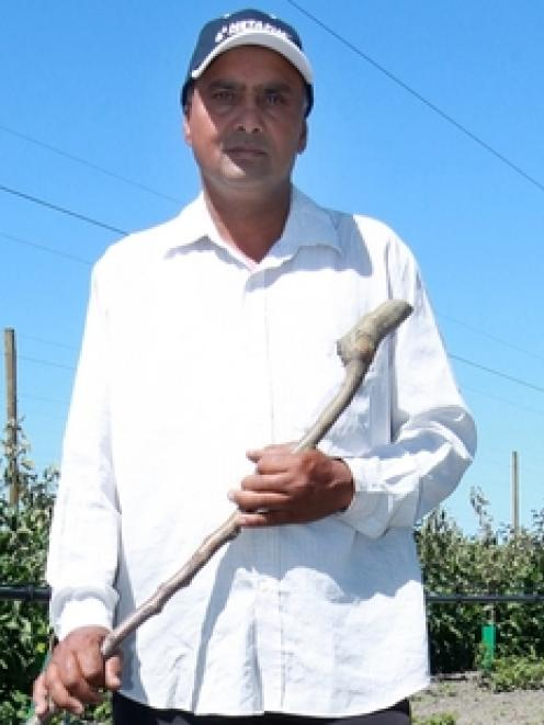 Hastings orchardist Kulwant Singh has been targeted twice by vandals, putting jobs at risk. Photo...
