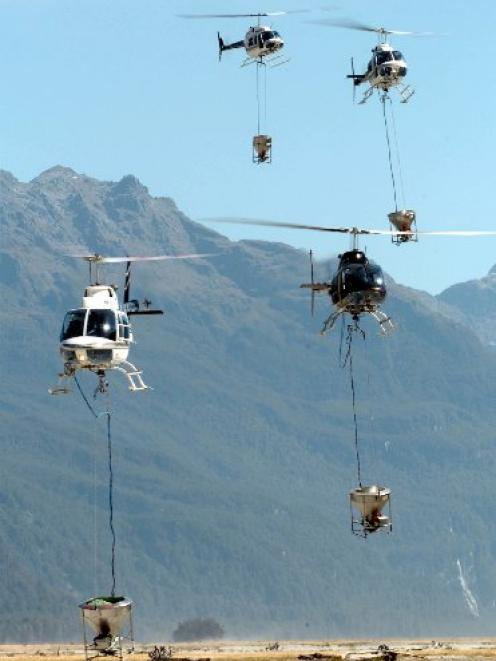 Helicopters arrive to be loaded with 1080 cereal bait to spread in the Arawhata Valley in 2008....