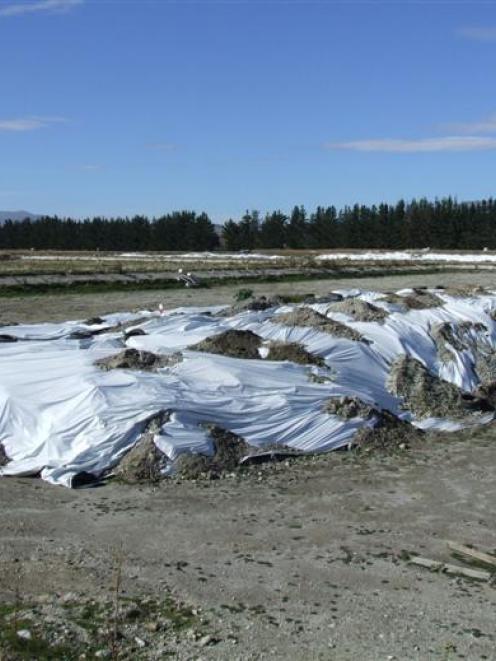 Huge mounds of biosolid sludge stored  near Wanaka. Photo by Matthew Haggart.
